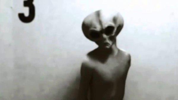 Яйцеголовый мужчина с Марса. Камера домофона засняла реального пришельца возле квартиры в России