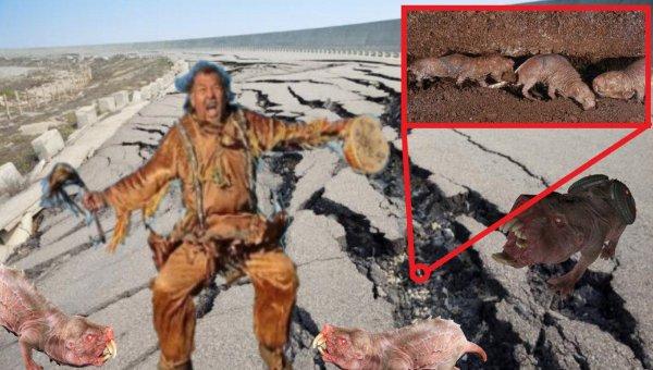 Кротокрысы хоронят Бурятию: Якутский шаман превращает Россию в крысиную нору