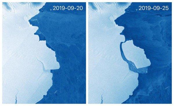 Ледокол с Нибиру: Мутанта-крушителя поймали в Антарктиде