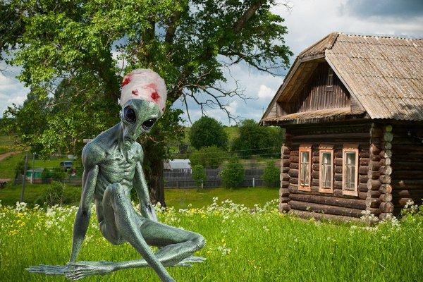 Раненный инопланетянин пришел в деревню к людям - рассказ очевидца