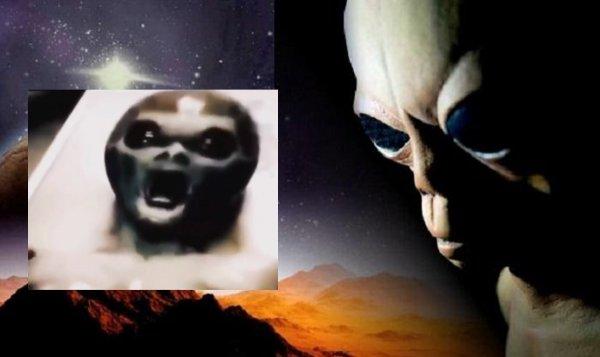 «Брыкающийся гуманоид»: Пентагон «слил» видеозапись из палаты «буйного» пришельца - эксперт