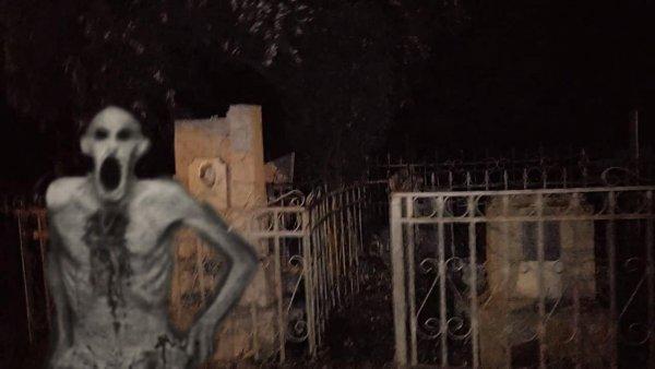 Чернобыльский упырь устроил «кровавую баню» на Благовещенском кладбище – эксперт