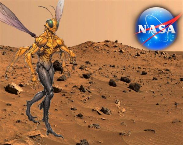 «NASA облажалось»: На Марсе записали «шушуканье» пришельцев-насекомых-уфолог