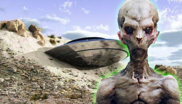 Первый контакт: в ЮАР нашли полуживого пришельца