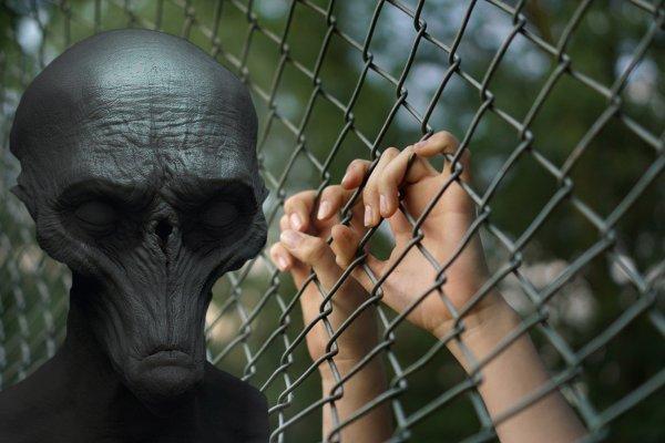 Научная ловушка: Учёные помогают пришельцам истребить человечество - эксперт