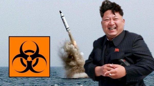 КНДР может запустить зомби-вирус на территорию Японии – эксперт