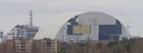 АЭС «выдохнула» радиацию? В Чернобыле поймали необычную змею-мутанта