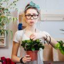 Цветы-отпугиватели. Какие домашние растения нельзя держать дома незамужней женщине