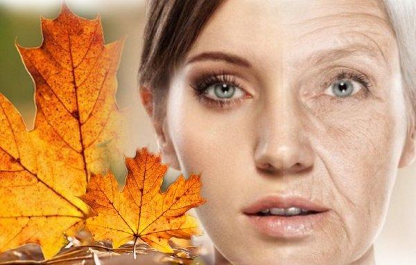 Ритуал на красоту - Осенний лист подарит молодость