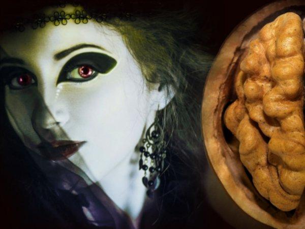 Прокачать интуицию: Как попасть на «Битву экстрасенсов» из-за ореха