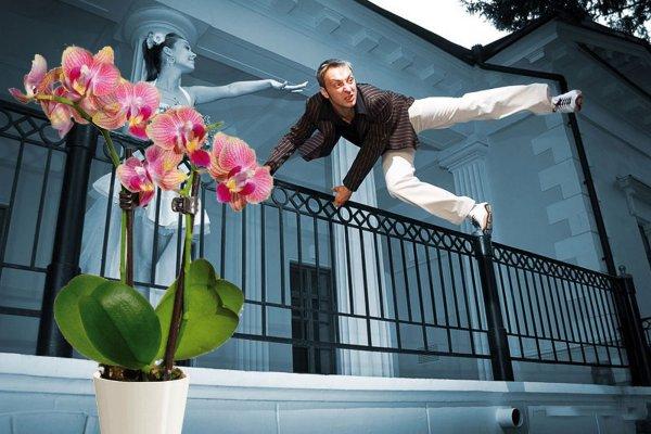 Выкинуть из дома - Орхидея вредит карме и отпугивает мужчин