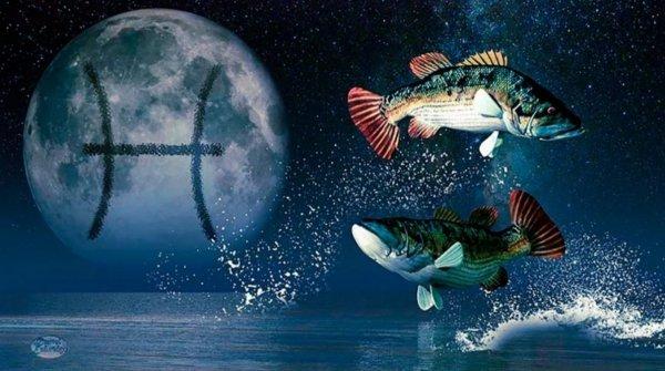 С ними без шансов – Астролог назвал знаки, с которыми Рыбам «ничего не светит»