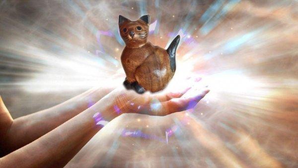 Деревянный кот удачу принесет. О мощном обереге для дома рассказал биоэнергетик