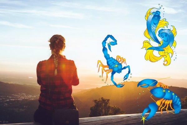 Опасности 2020 года: Чего Ракам, Рыбам и Скорпионам бояться в Год Крысы?