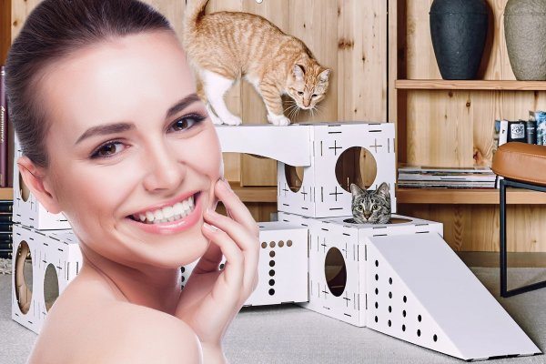 Кошкин дом: Удобства для питомца, которые принесут счастье хозяевам