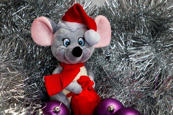 Крыса придёт с подарками: Что принесёт Водолею первый месяц года, рассказал астролог
