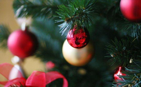 Ёлка в доме – ссорам быть: Почему нельзя долго держать дерево