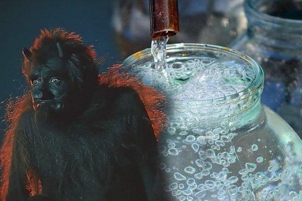 Крещенская вода: Обряд 18 января избавит дом от нечистой силы