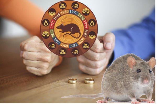 Равнодушен и эгоистичен. Почему рожденные в год Крысы часто разводятся?