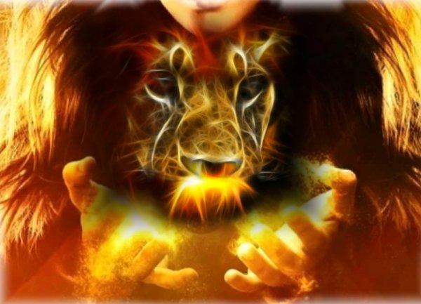 Все так хотят, но только Лев будет светиться от счастья 13 марта