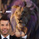 Льва ноги кормят, а измены его портят