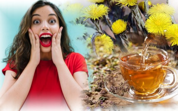 Мать-и-мачеха против кризиса: Травяной чай привлечёт богатство