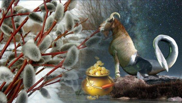 Инъекция вербы в сердце: От любви у Козерога в апреле «набухнет» и кошелек