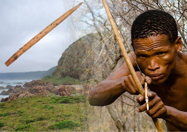 Артефакт возрастом в 60 тысяч лет показал, что древние люди смазывали наконечники стрел ядом