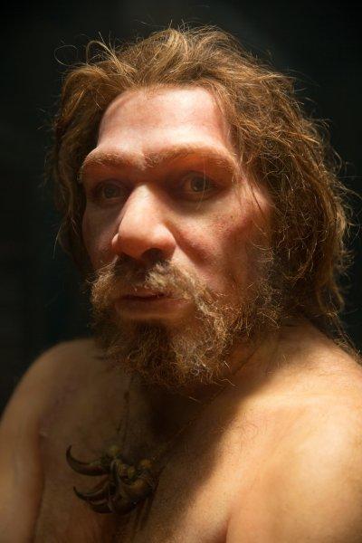 Суперкомпьютер установил, что неандертальцы вымерли из-за жесткой конкуренции