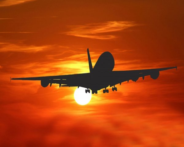 Ассоциация туроператоров спрогнозировала падение цен на авиаперелеты по РФ