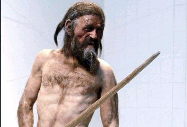 Найденные в Германии 6000-летние каменные топоры говорят о расколе на элиту и простолюдинов