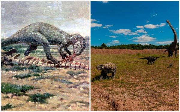 Аллозавры Юрского периода прибегали к каннибализму из-за дефицита пищи