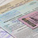 Справка 003 ВУ для замены водительского удостоверения