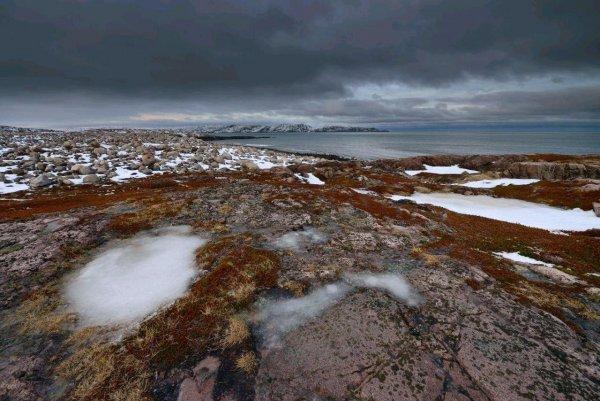 Изучение кратеров на дне Баренцева моря будет продолжено из-за метановых трещин