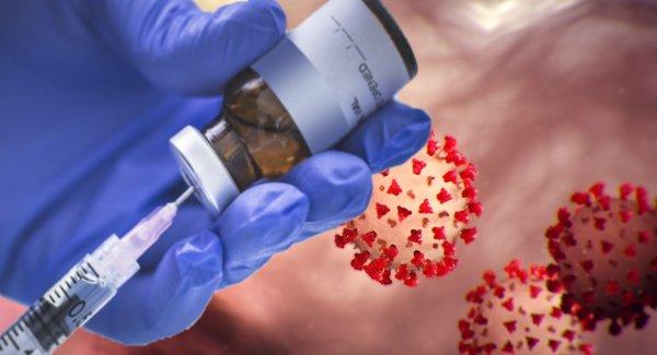 Учёные  нашли ключ к созданию вакцины от коронавируса