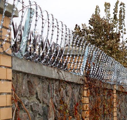 Частный забор из колючей проволоки